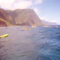 kayaking the tallest sea cliffs in the world on Molokai Hawaii