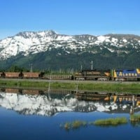 the Alaskan Railroad to Denali National Park