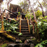 lovely treehouse by volcano Big Island Hawaii
