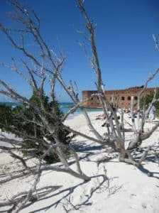 Fort Jefferson at Dry Tortugas National park key west
