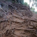 Rare-Finds-Hawaii-Kalalau-Trail