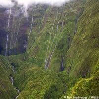 Wall of Tears Hawaii