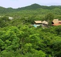 remoteness of treehouses in Nicaragua