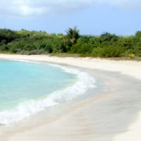 secret vieques beach in puerto rico