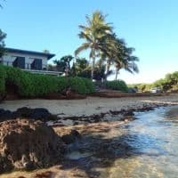 small guesthouses right on the beach hawaii
