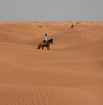 Tunisia Desert on Horseback