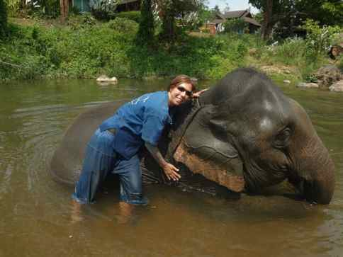 bathing an elephant in Thailand