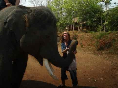 Adopting elephant in Thailand