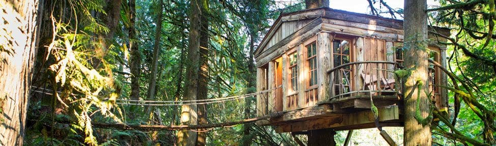 treehouse by seattle pacific northwest
