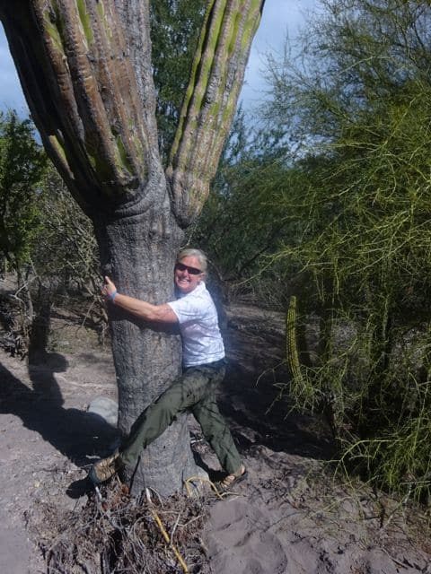 that's me, the cactus hugger, in Baja Sur