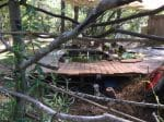 Eclectic design of NC treehouse