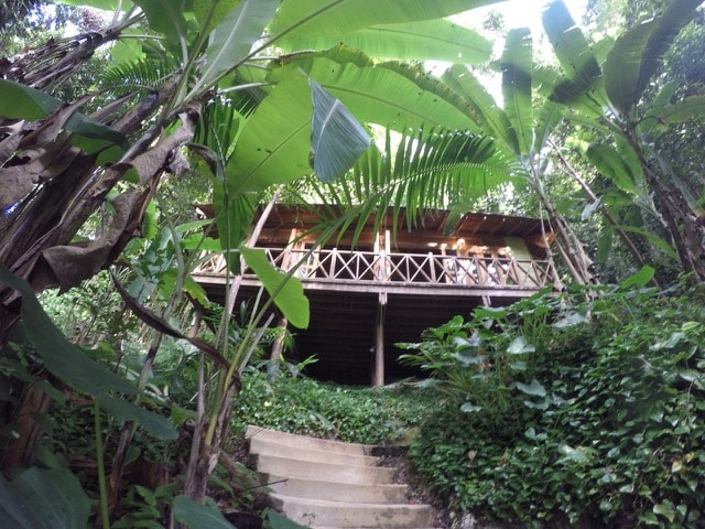 5* treehouse in Jamaica