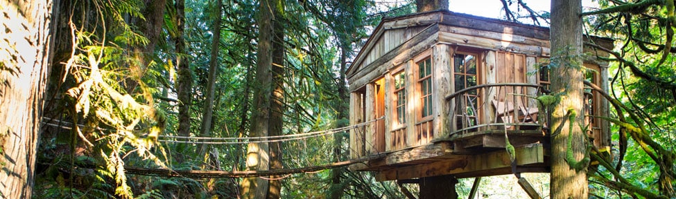 Sleep in a treehouse by Seattle WA