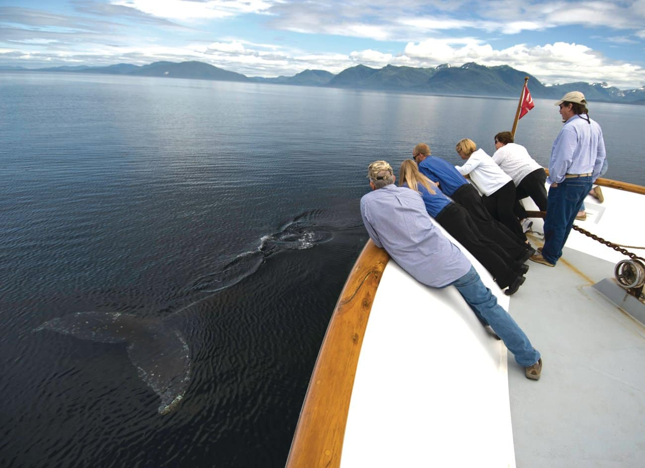 alaska-whale-watching-uncruise-ship