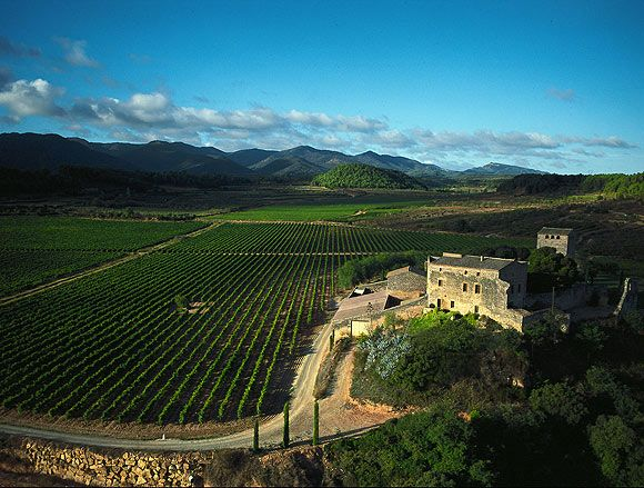 Spain-Abadal-winery-landscape
