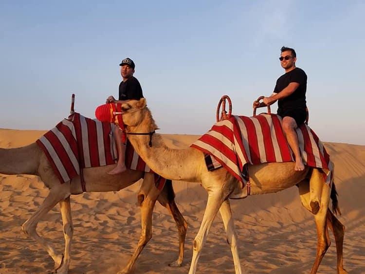 martine_s_boys_camels_in_dubai