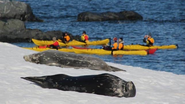 antarctica-kayak-adventure
