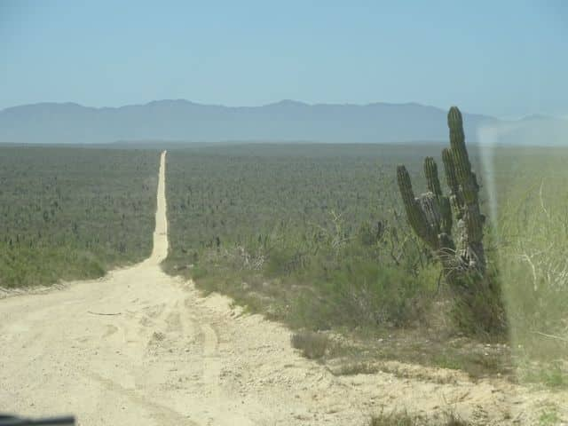 baja-roadtrip-through-desert