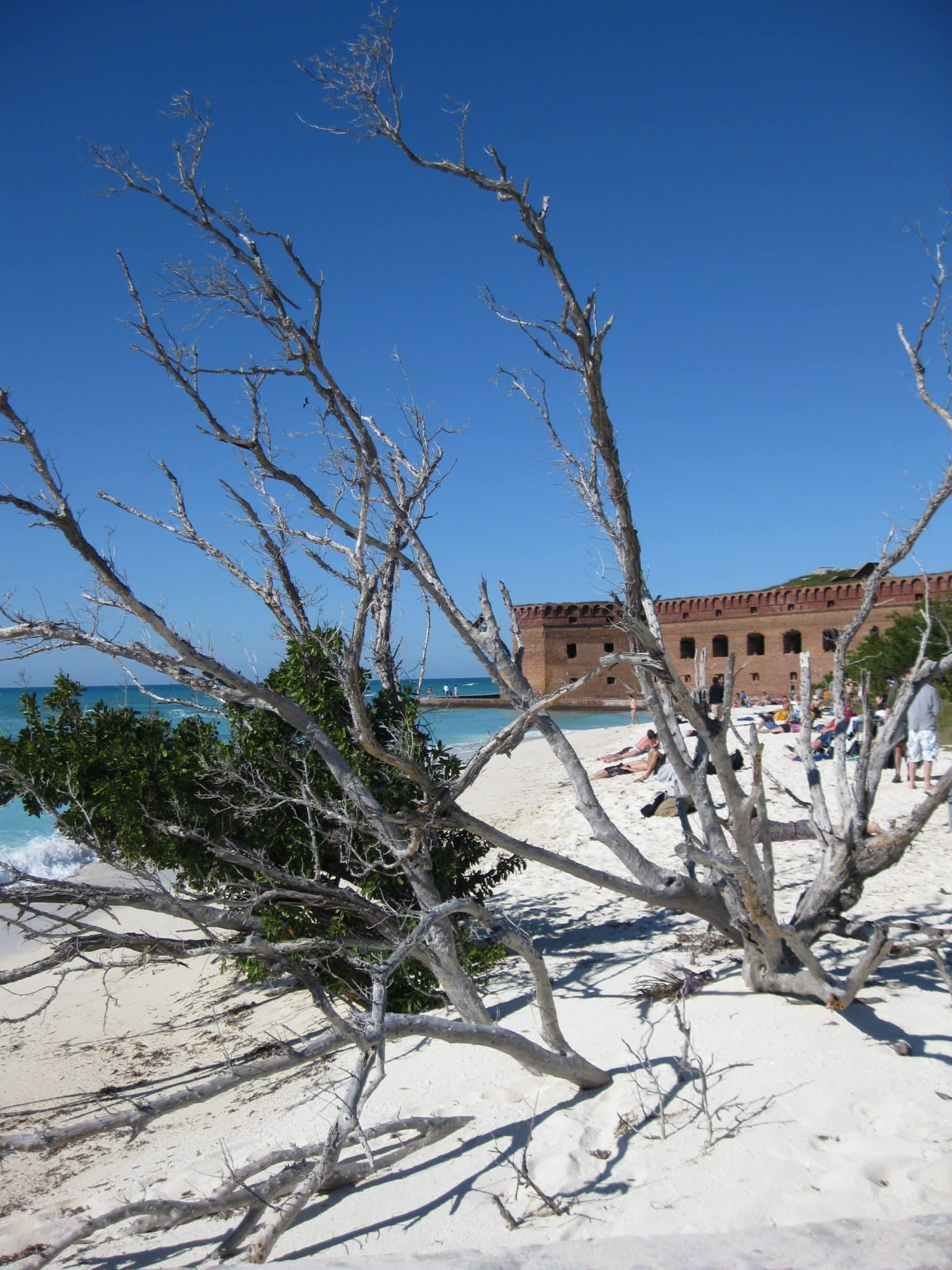 key-west-daytrip-dry-tortugas