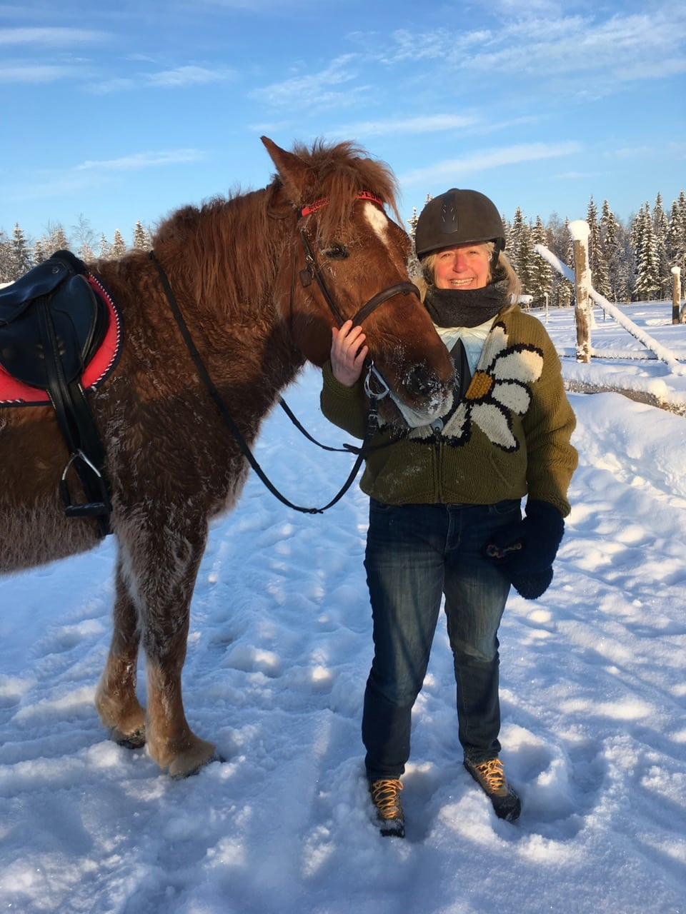 lapland-melanie-in-paddock-with-horse