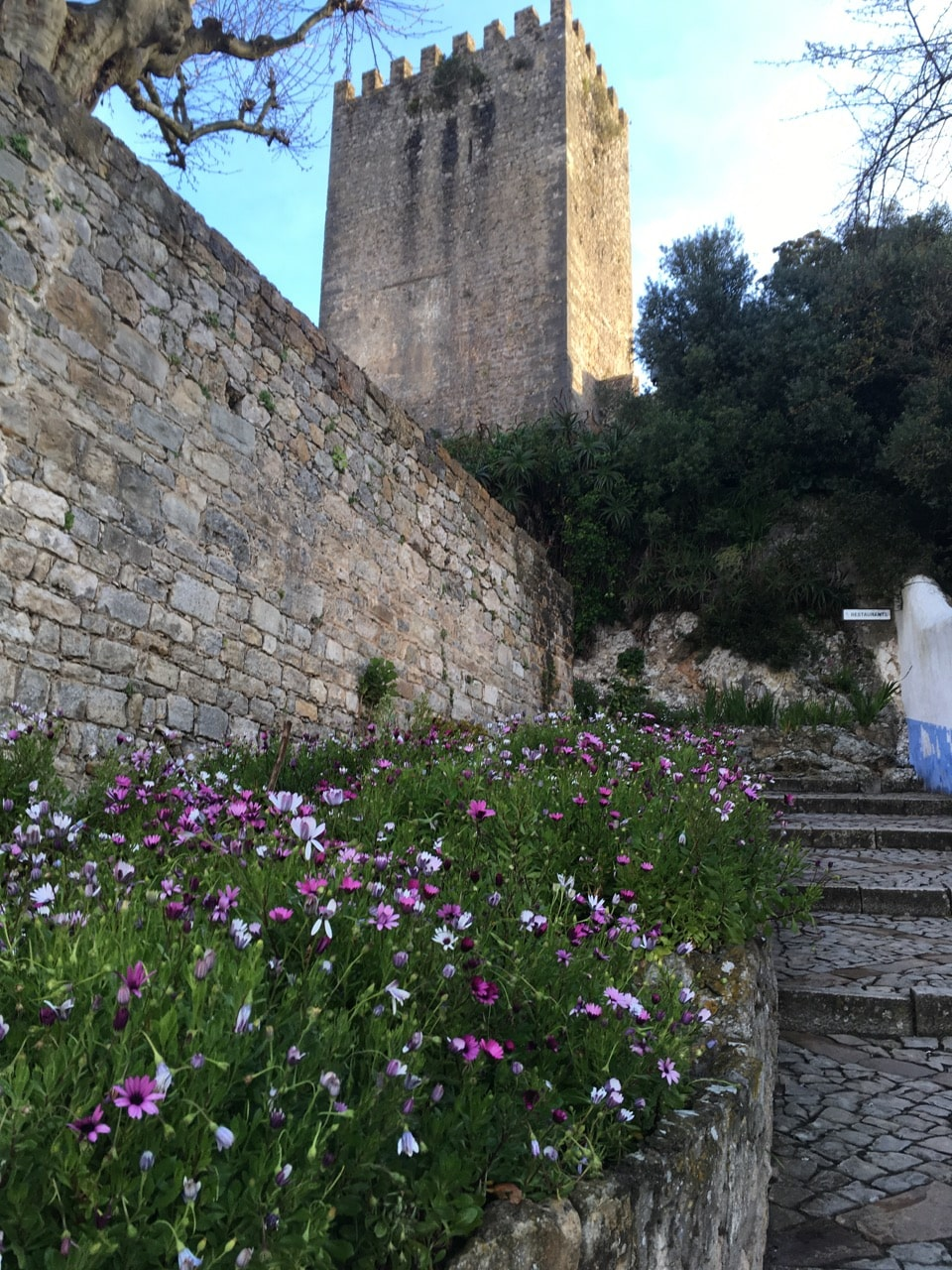 portugal-obidos-with-flowers