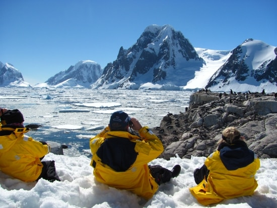 rare-finds-antarctica-antarctic-petermann-island-lemaire-channel-penguin-watching