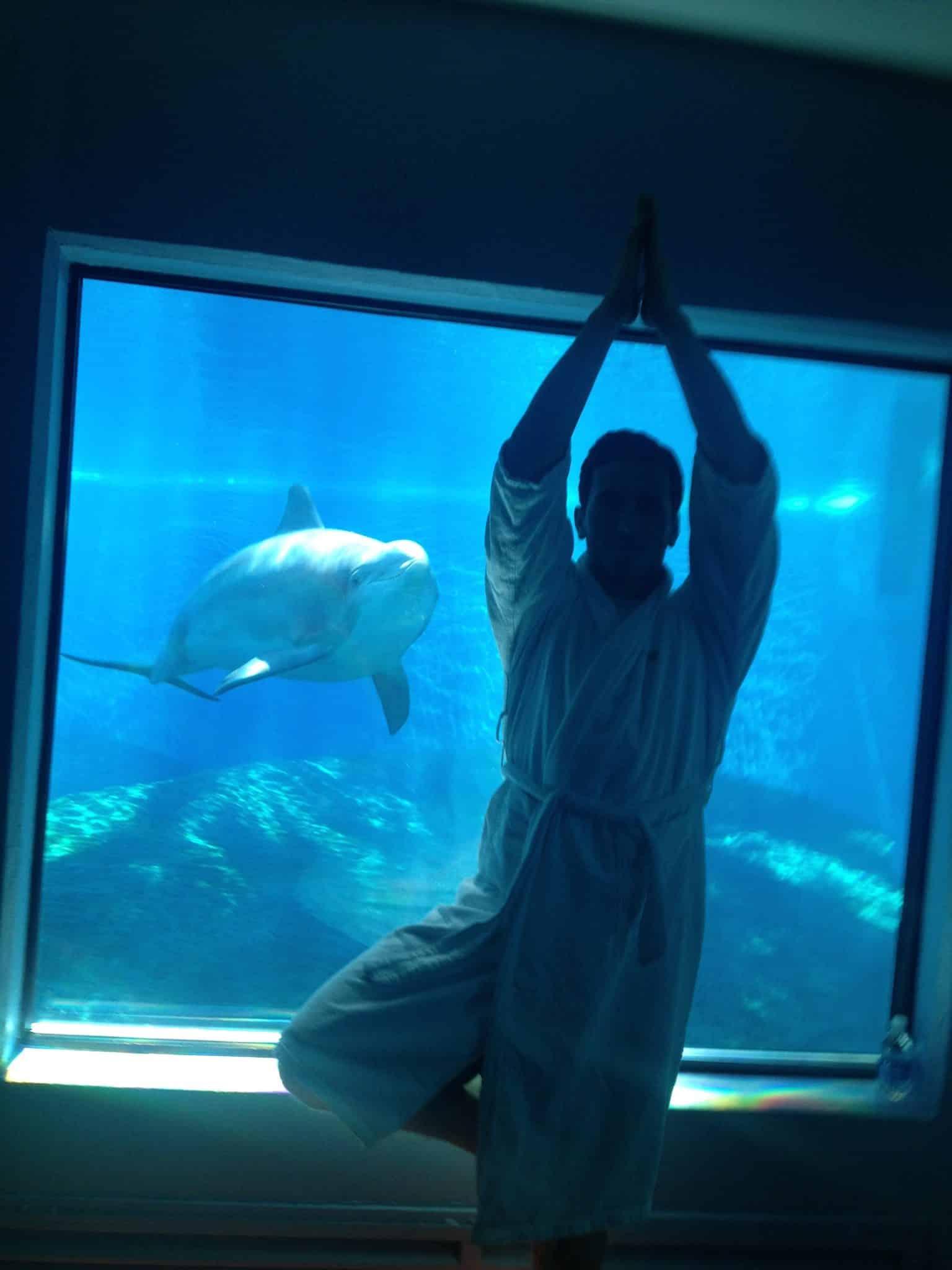 sw-parks-doug-yoga-with-dolphins-las-vegas