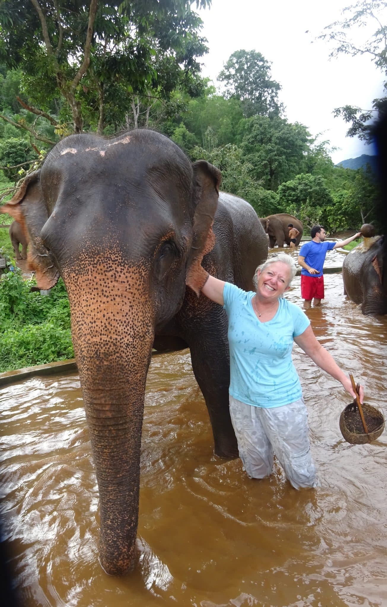 thailand-chang-mai-bathing-elephant-melanie-ceo-rare-finds-travel