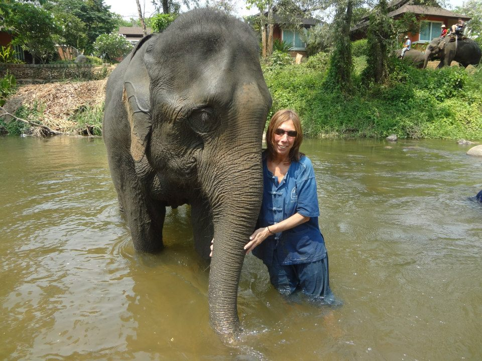 thailand-chang-mai-mindy-bathe-elephant-in-river