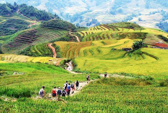 vietnam-sapa-hills